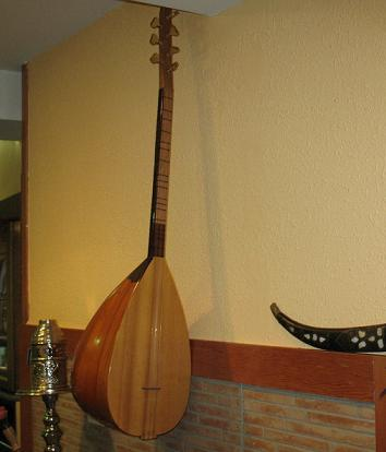 La Cetra  Strumento dal fascino antico  Musica Colta  L