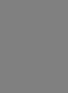 Concerto for Violin and Strings No.6 in A Minor, RV 356 (L