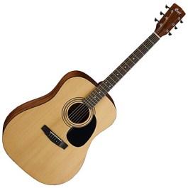 Cort AD810-OP Acoustic Guitar