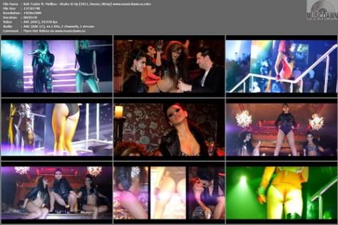 Bob Taylor ft. Mellina - Shake It Up (2011, House, HD 1080p)