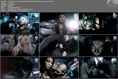 DJ M.E.G. feat. Timati - Party Animal (2010, Electro, HDrip)