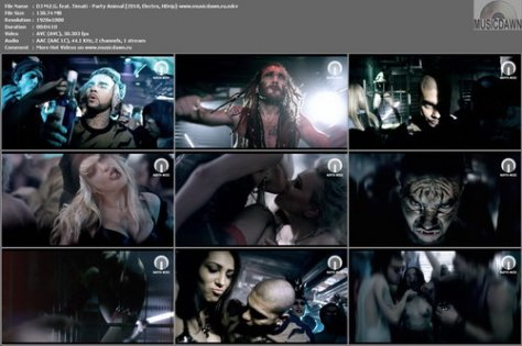 DJ M.E.G. feat. Timati – Party Animal [2010, HDrip] Music Video (Re:Up)
