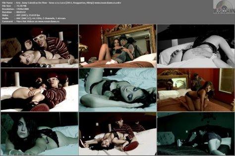 Los Catedratikos - Sexo A Lo Loco (2011, Reggaeton, HDrip)