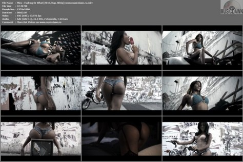 Plies - Fucking Or What [2013, Rap, HD 1080p]