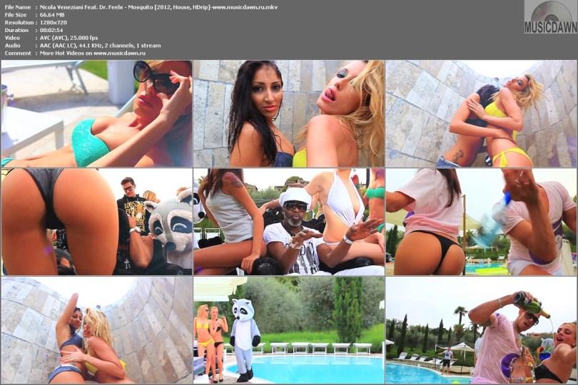 Nicola Veneziani Feat. Dr. Feelx - Mosquito [2012, House, HD 720p]