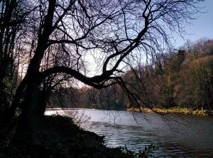 Winter in Durham (c) Richard Reece