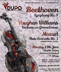 Palatinate Orchestra concert poster - violin artwork