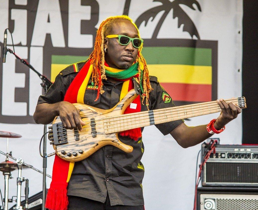 Raggae Musician