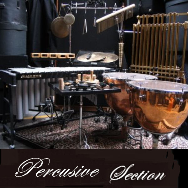 Percusive Section