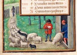 Illumination of sheep and shepherds