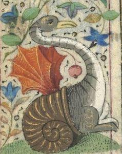 Dinosaur in a snailshell