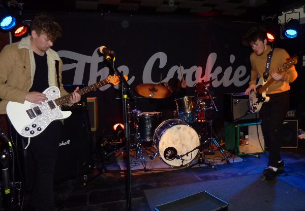 The Lids at The Cookie - 29th Jan 2016. photo: Keith Jobey