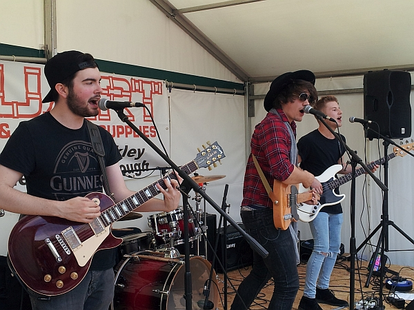 The Harmonics at Enderby festival, July 2016