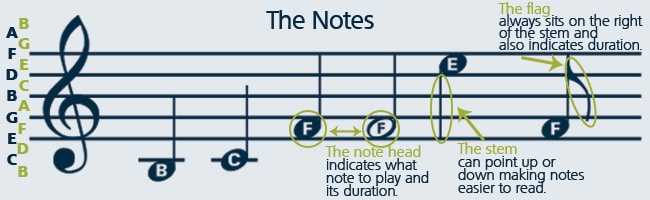 In order to know how to read music, you must learn the parts of a musical note.