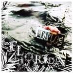 Diplo – Florida