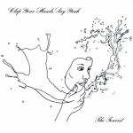 Clap Your Hands Say Yeah – The Tourist