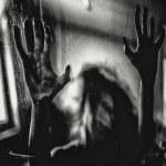 Behind The Shadow Drops – H a r m o n i c