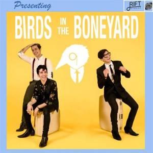 Cool Pop-Rock New Single from Birds In The Boneyard