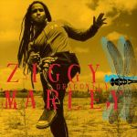 ziggy11