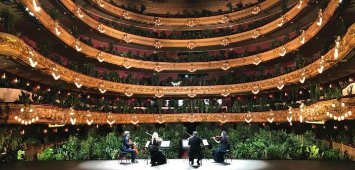 Il Teatro dell'Opera di Barcellona riapre con un pubblico di sole piante