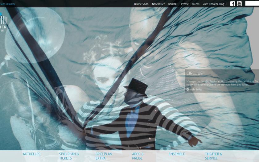 Website des Theaters Münster. Screenshot vom 25.5.2017