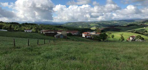 Walk to Campiello