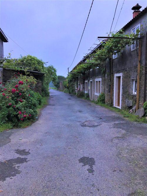 The Camino along A Rúa