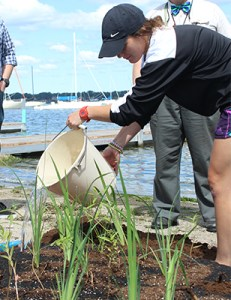 MCC students add native plants to the Floating Treatment Wetland