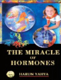 THE MIRACALE OF HORMONES
