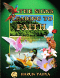 THE SIGNS LEADING TO FAITH