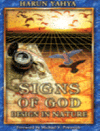 SIGNS OF GOD DESIGN IN NATURE
