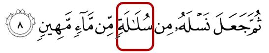 Quran 32-8