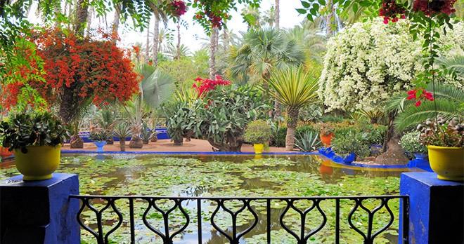tour-majorelle-garden-marrakech