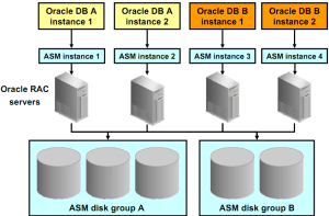 Oracle_Automatic_Storage_Management_ASM_5