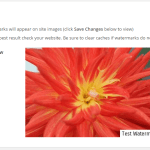 Watermark Images with Watermark WP Image Protect WordPress Plugin