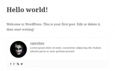 Best Author Box Plugin in WordPress