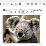 How to Add Border Around Image in WordPress