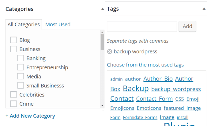 Categories vs Tags in WordPress Website