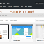 What is Theme in WordPress and How does It Work?