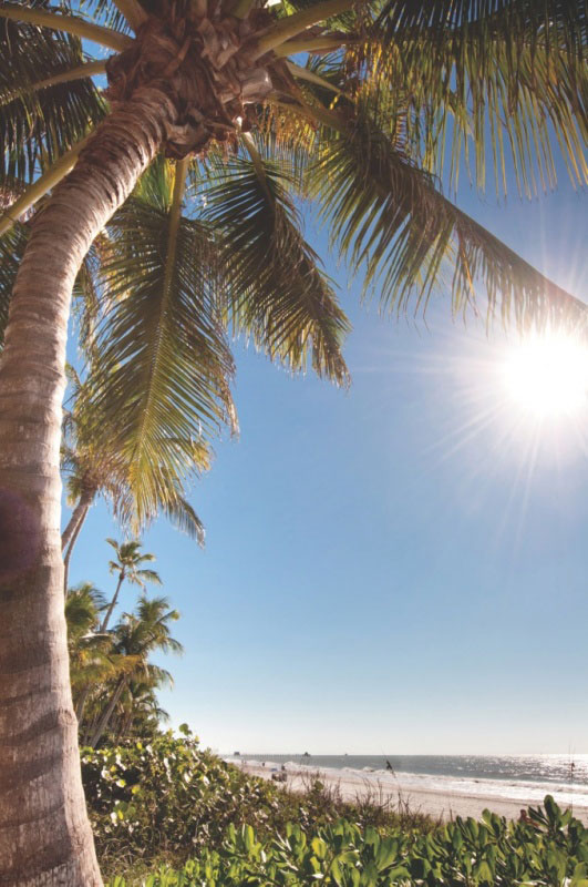 4 Tips for surviving the heat of Florida Sunshine  Must Do Visitor Guides