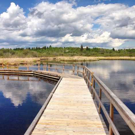 omnick marsh clear lake manitoba