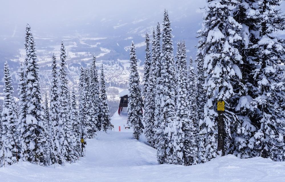 Fernie Ski