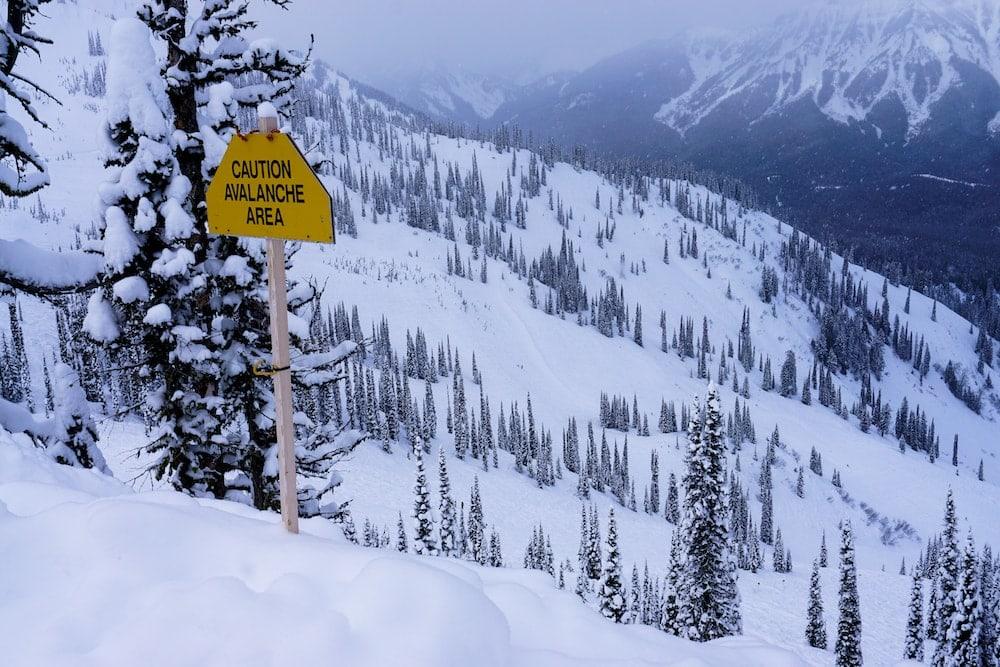 Fernie Skiing