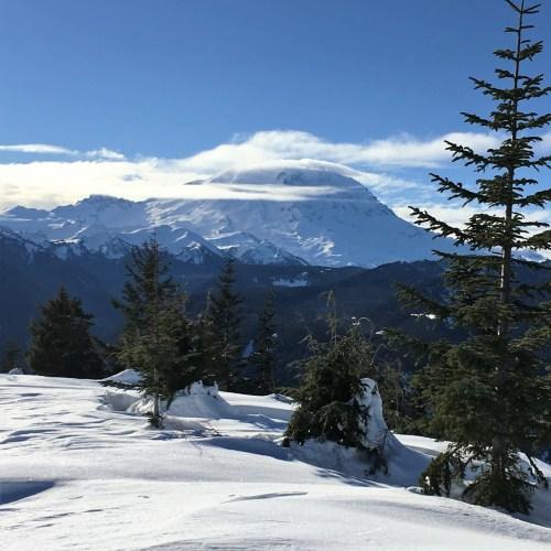 Mount Rainier WA