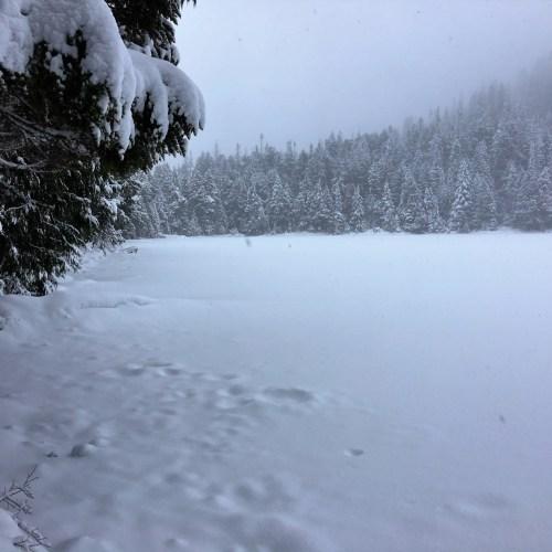 Mountain Loop Snowshoe WA