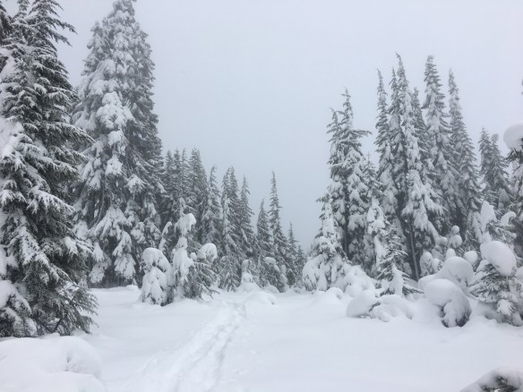 Skyline Lake Snowshoe and Boulder Gardens | Must Hike Must Eat