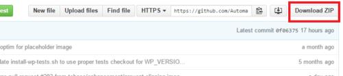 Download AMP Plugin