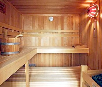 Conventional sauna