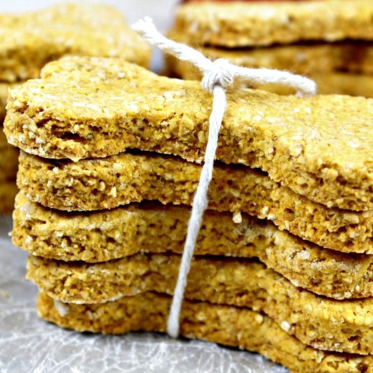 Oatmeal Pumpkin Homemade Dog Biscuits