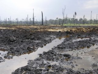 Niger Delta oil disaster